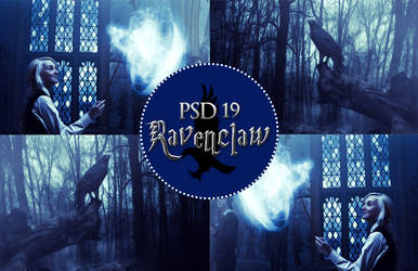PSD 19 - Ravenclaw by Wake--Me--Up