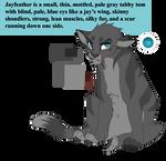 Jayfeather