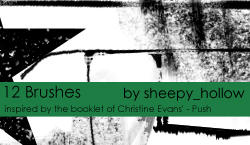 Christine Evans-Style Brushes by ghostsheep