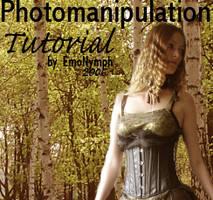 manipulation tutorial. by EmoNymph