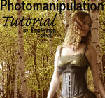 manipulation tutorial.