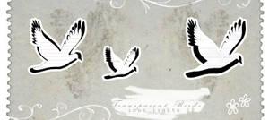 Notebook Birds 1 by innocentLexys