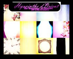 Hyacinthe d'Orient by innocentLexys