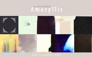 Amaryllis by innocentLexys