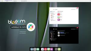 Blossom Windows 10 Suite