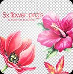 5x flower .png's