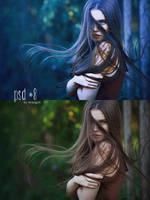 PSD #8 by BriniGirl