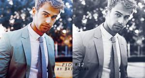 PSD #12 by BriniGirl