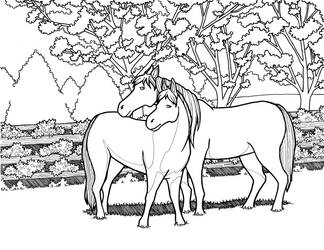 Coloring Page - Horses