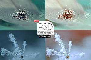 PSD Coloring 025 by vesaspring