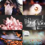 PSD Pack - Autumn