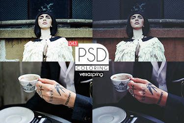 PSD Coloring 043 by vesaspring