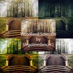 Woodland Staircase Set by Virgolinedancer1