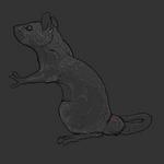 free rat lineart
