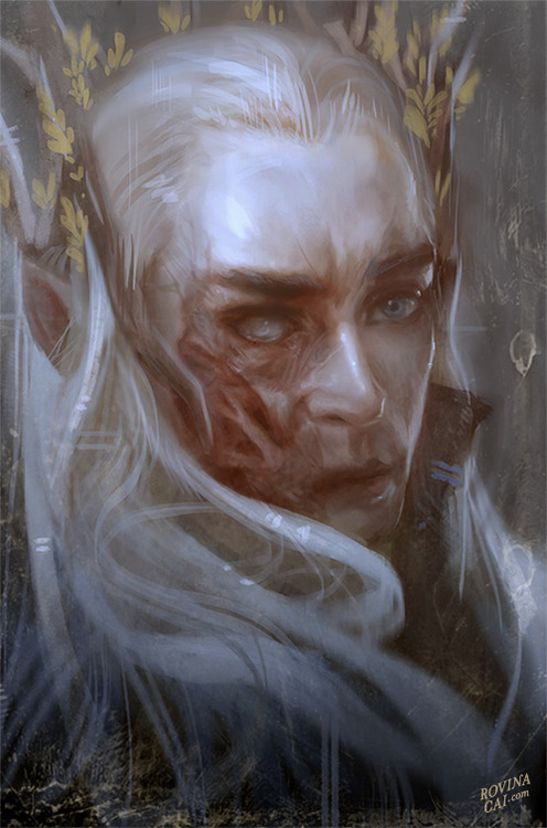 Thranduil x Elf!Reader| Dragon Fire by Xalath on DeviantArt