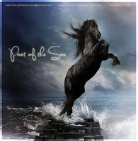 Poet of the Sea2