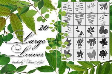 Large Leaves brushes