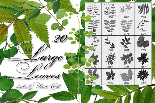 Large Leaves brushes