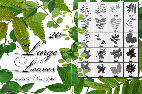 Large Leaves brushes by ForestGirlStock