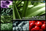 Infinite Nature vol.1