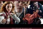 Harry Potter PNG Pack 1