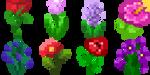 Flowers growing (animated) by Brysiaa