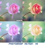 Photoshop Action 019