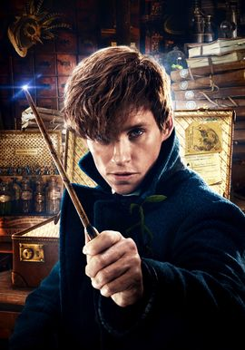 Attention and Affection [Newt Scamander x Reader] by nixdex on