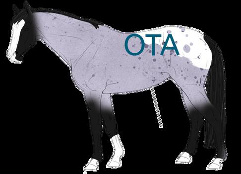 OTA Blue Roan Appy Adopt [OPEN]