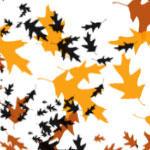 Simple Fall Leaves - tomqvaxy by tomqvaxy