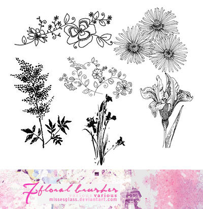 Floral brushes - 2312 by Missesglass