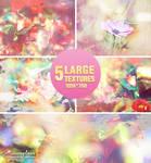 Nature Textures - 2404