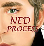 Ned - Process by Lawleighette