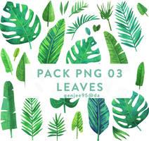 Pack Png 03 Leaves by Genjee95