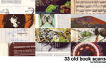 scans_old_books