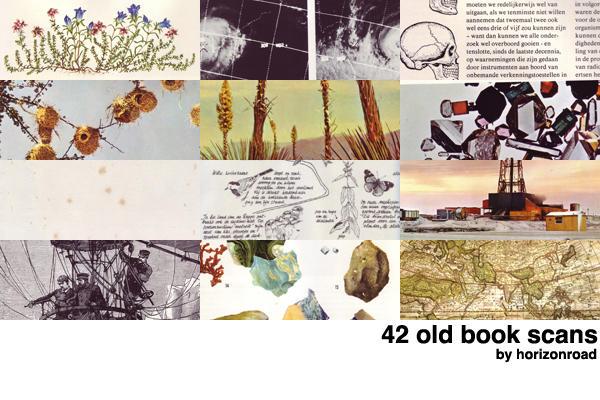 http://fc06.deviantart.net/fs71/i/2010/186/2/f/scans_old_books_2_by_horizonroad.jpg