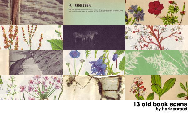http://fc02.deviantart.net/fs70/i/2010/203/a/2/scans_old_books_3_by_horizonroad.jpg