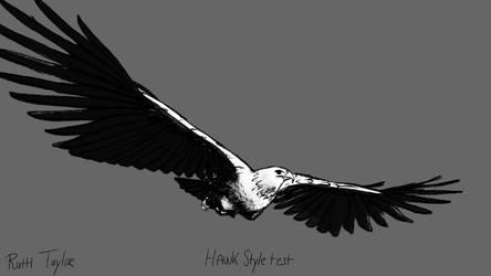 Hawk-Style-Test by Ruth-Tay