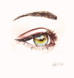 Eye study - watercolor