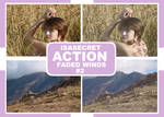 IsaSecret Action #2 - Faded Winds