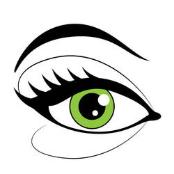 Eye with makeup vector image