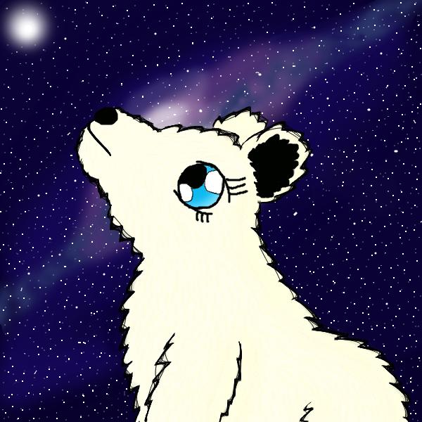 Arctic Stars by Greenpolarbear47