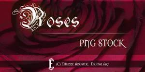 Roses STOCK