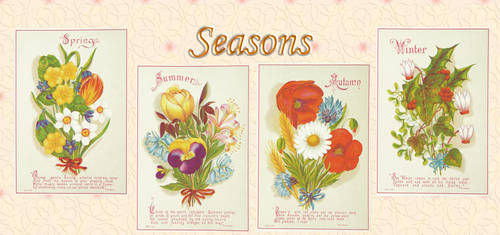 Flower seasons by auRoraBor