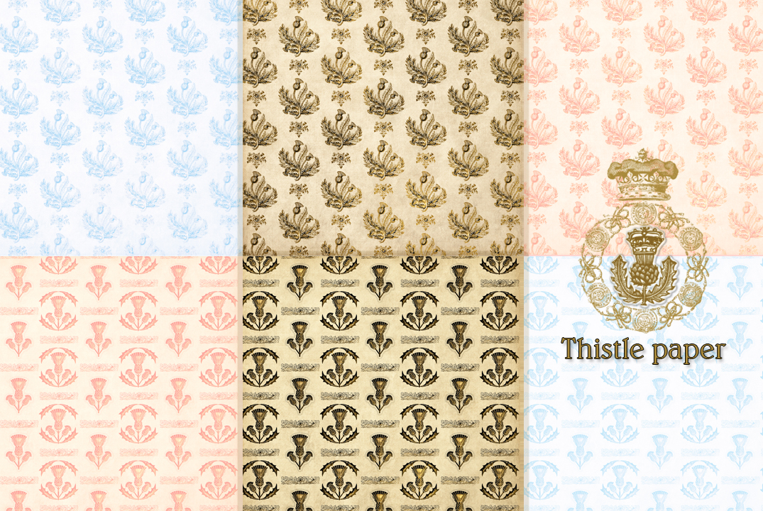 Thiistle papers by auRoraBor