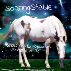 SoaringStable by Exo-Exo
