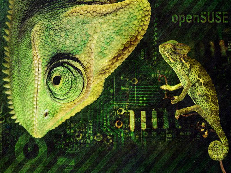 Geeko OpenSUSE Wallpaper by hell0z0mbie