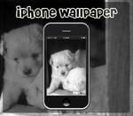 iPhone - Sleepy Head