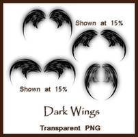 Dark Wings by shd-stock