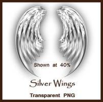 Silver Wings by shd-stock